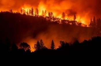 Susza przyczyną największego pożaru w historii
