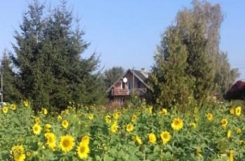 Dofinansowanie na rozwój rolnictwa ekologicznego dla