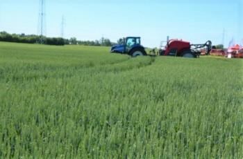 Dopłaty z PROW a inne rozwiązania dla rolników