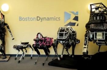 Psie roboty wejdą na rynek już w przyszłym roku