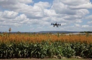 W rolnictwie przyszłości nie ma miejsca dla ludzi
